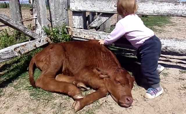 Своевременная терапия избавит малыша от мучений