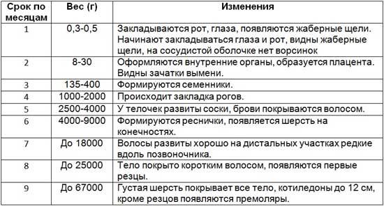 Таблица изменений в зависимости от срока стельности