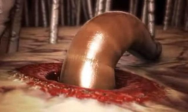 Черви разрушают оболочки органов и сосудов