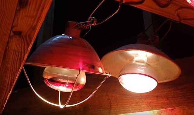 Дополнительный свет обеспечат лампы