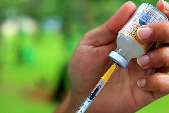 Прививки надо делать регулярно
