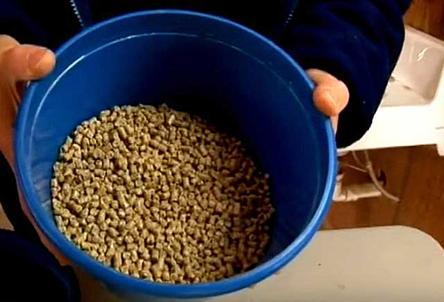 В сутки необходимо около 3 кг комбикорма
