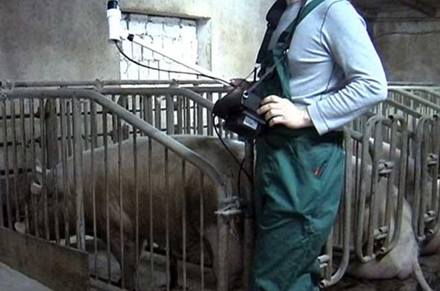 Осмотры ветеринара должны быть регулярными