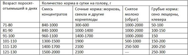 Таблица кормления поросят-отъемышей
