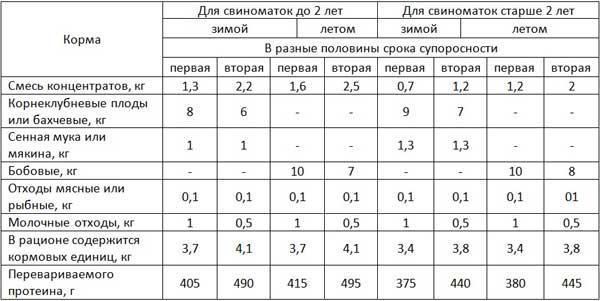Таблица примерного рациона для супоросной свиноматки