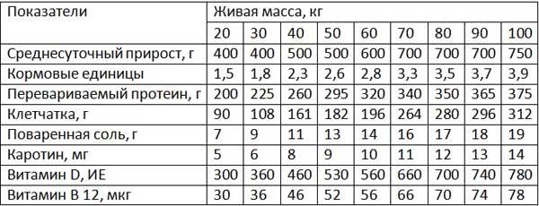 Таблица кормов для откорма на бекон