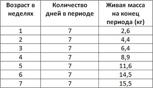 Таблица среднего веса для поросят разного возраста