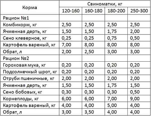 Таблица примерных рационов зимнего периода для свиноматок с десятью поросятами