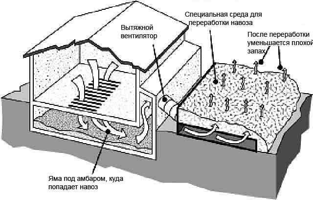 Схема переработки навоза