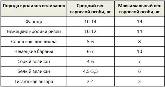 Таблица веса кроликов-великанов разных пород