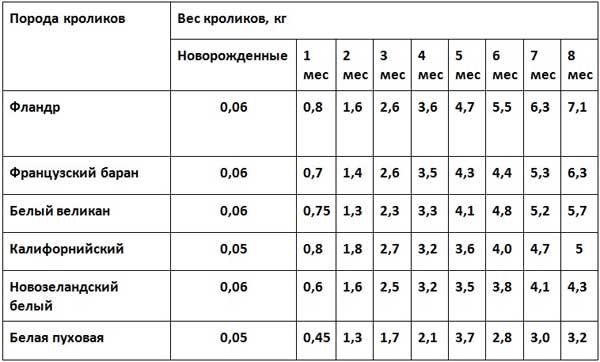 Таблица веса кролика в зависимости от возраста