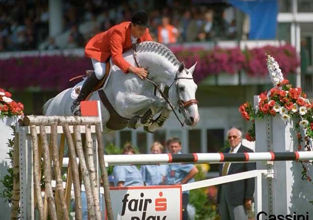 Большинство представителей получали высшие награды в конном спорте