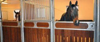 Размер денника для лошади