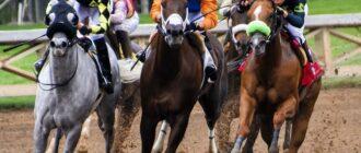 Вид конных скачек